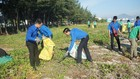 Hoạt động thanh niên làm sạch biển, bảo vệ môi trường tại Đà Nẵng