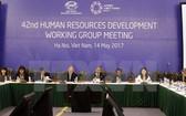人力資源發展工作小組(HRDWG) 全體會議。(圖源:文疊/越通社)