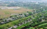 位於阮文靈大道旁側的荒蕪區。(圖源:誠志)
