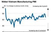 日經越南製造業採購經理人指數顯示本年5月份PMI指數銳減。(圖源:Nikkei)