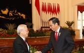 阮富仲總書記會見印尼總統佐科‧維多多。(圖源:越通社)