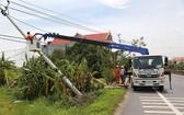 電力人員在維修電線杆。(圖源:互聯網)