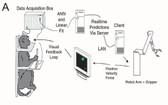 恒河猴使用腦機介面原理圖。