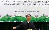 政府副總理武德膽出席落實發展越南足球至2020年的戰略與至2030年願景小結會議並發表指導意見。(圖源:光勝)