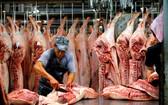 南部東區生豬價格上漲,每公斤比前3天上升約2000至3000元,環比上升7000至9000元。(示意圖源:玉陽)