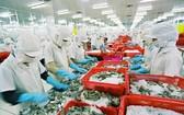 歐盟加強檢查我國海產品。(示意圖源:互聯網)