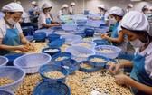 農產品是我國出口美國市場的支柱產品之一。