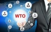 歐盟在 WTO 就美鋼鋁關稅提起磋商請求。(示意圖源:互聯網)