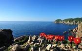 """""""越南海洋與海島週""""以及""""2018年世界海洋日""""將於今年6月初在廣寧省展開。(示意圖源:互聯網)"""