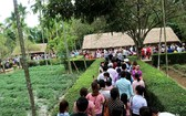 各地遊客團絡繹不絕前往乂安省南壇縣金蓮遺跡區參觀。(圖源:乂安報)