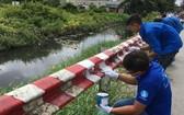志願者在各涌道的安全護欄刷漆。