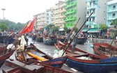 漁船歸港避颱風。