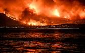 希臘雅典山火致 60 人死上百傷。(圖源:互聯網)