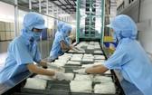 工人生產米粉一瞥。