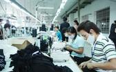 未來期間,我國製衣工業將需要大量有高技術水平的勞工以確保產品質量。