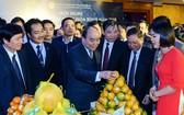 政府總理阮春福參觀和平省農產品展位。(圖源:光孝)