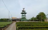 沙瀝花村的18 米高賞花台即將完成。(圖源:阮行)