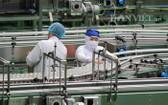 Tanifood 果蔬加工廠自動化生產線。(圖源:元偉)