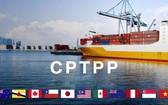 CPTPP 協定將會帶來更多實惠。(示意圖源:互聯網)