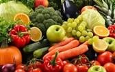青少年時多吃菜,中老年時更精明。(示意圖源:互聯網)