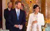 哈里王子與梅根王妃。(圖源:互聯網)