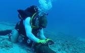 亞太直達海底光纜系統(APG)發生故障。(示意圖源:互聯網)