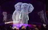 德國龍卡里馬戲團成為世界上第一個使用全息圖代替活體動物的馬戲團。(圖源:9GAG)