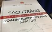 2019年越南企業白皮書。(圖源:明山)
