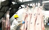 今年底預報會缺乏豬肉。