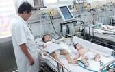 今年初以来,本市登革热住院確診病例激增。(示意圖源:互聯網)