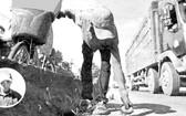 阮文成在街上拾起空瓶子和釘子。