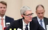 蘋果公司首席執行官庫克。(圖源:互聯網)