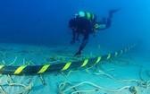 AAG 海底光纜故障 11 日才能修復。(示意圖源:互聯網)