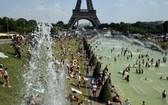 炎熱的氣候,使得許多巴黎市民湧到景點區戲水消暑。(圖源:互聯網)