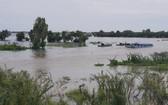 洪水水位已上漲,並淹沒永會東、富友、永祿等鄉若干聯村交通道路。(圖源:互聯網)