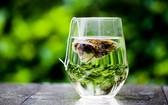 最新研究發現:塑料茶包可釋放數十億個微型塑料顆粒。(示意圖源:互聯網)