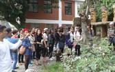 出國觀光的越南遊客逐漸年輕化。