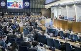 糧安委會議。(圖源:FAO)