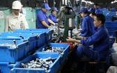平陽省工人不欲延長退休年齡。(示意圖源:田升)