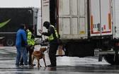 法國當局於例行檢查時查獲藏有31名巴基斯坦人的貨車。圖為示意圖,與新聞內容無關。 (圖源:歐新社)