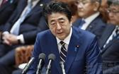 日本首相安倍晉三在眾院委員會就兩名閣僚辭職道歉。(圖源:共同社)