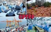 據世銀表示,截至2030年,越南出口至CPTPP地區各國市場將從540億美元增至800億美元,佔越南出口總金額的25%。(示意圖源:田升)
