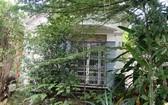 阮氏萩在平新郡林宏街建設的住房傾斜,牆壁和屋基有很多裂縫。