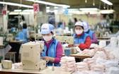 冬春針織廠致力投入口罩生產。(圖源:Vinatex)