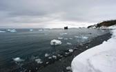 南極洲喬治國王島融化的冰川。(圖源:聯合國)