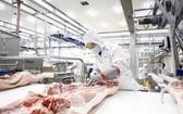 Masan MEATLife股份公司在隆安省投建安全豬肉加工組合,加強為南部市場服務。