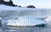 """澳大利亞氣候科學家19日稱,全球變暖或導致南極冰川發生""""不可逆轉""""的大規模融化。(圖源:AP)"""