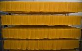 圖為西瓜米線生產烘乾工段。(圖源:Zing)