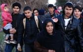 幾名經土耳其由海路進入希臘境內的難民和非法移民。(圖源:新華社)