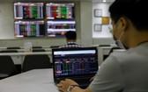 越南證券寄存中心:今年3月份,國內證券市場新註冊投資者逾3萬2000賬戶。(圖源:瓊陳)